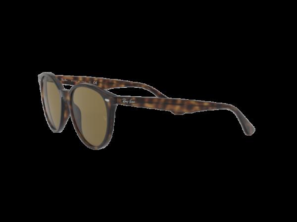 Gafas Ray-Ban RB4305 710 73